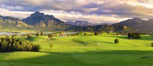 banner-lindenberg